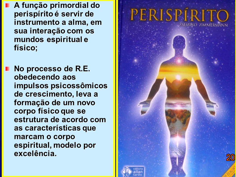 A função primordial do perispírito é servir de instrumento a alma, em sua interação com os mundos espiritual e físico;