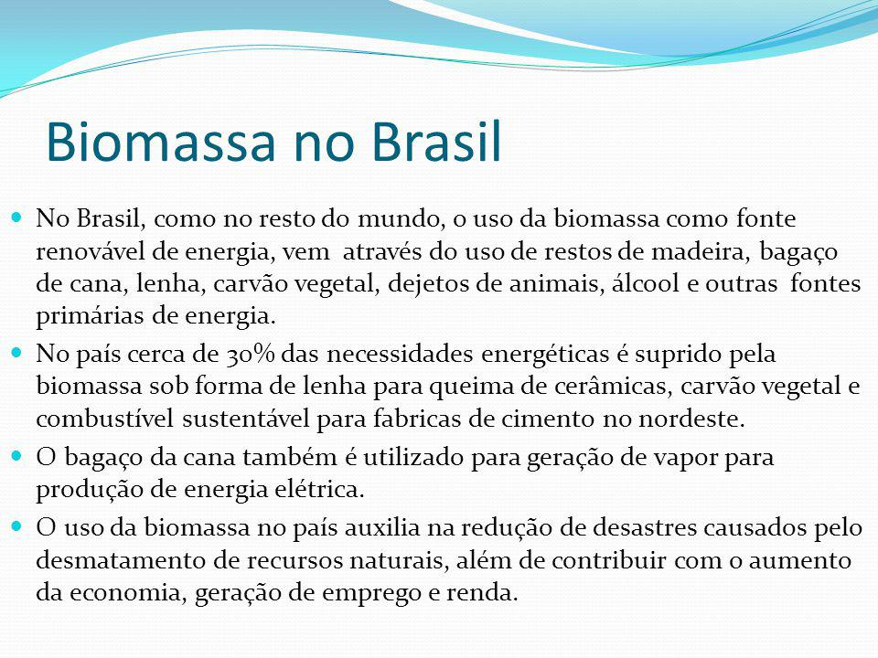 Biomassa no Brasil