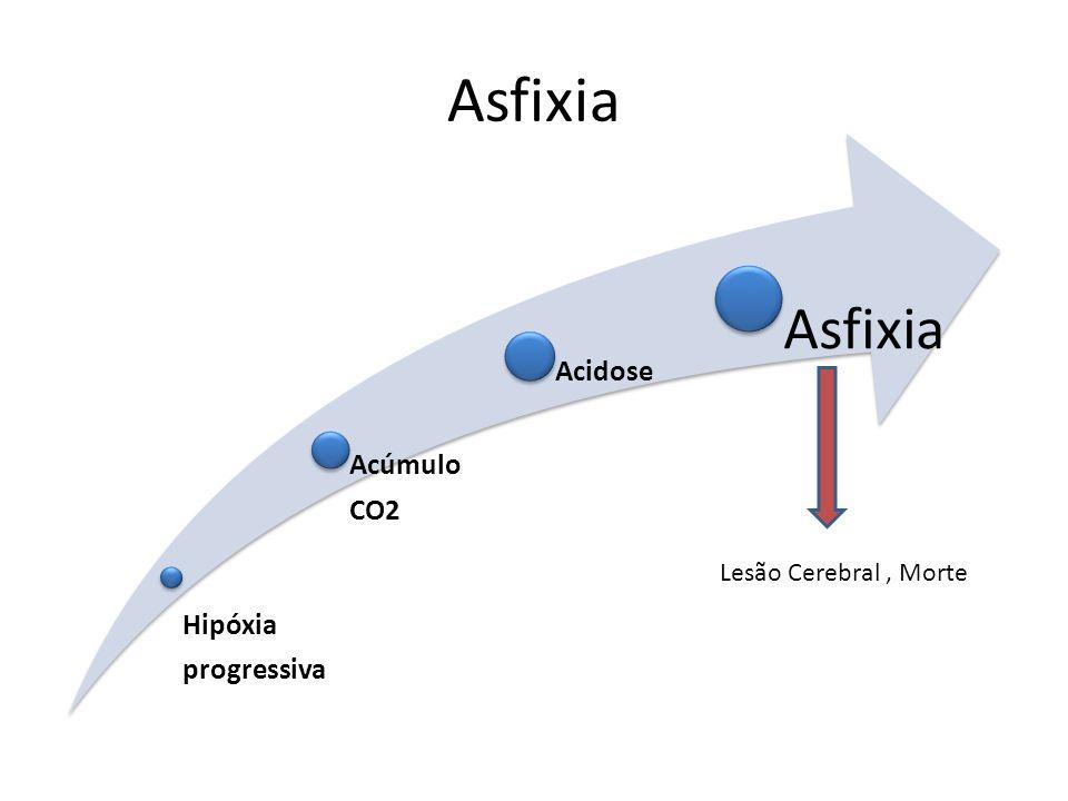Asfixia Hipóxia progressiva Acúmulo CO2 Acidose Lesão Cerebral , Morte