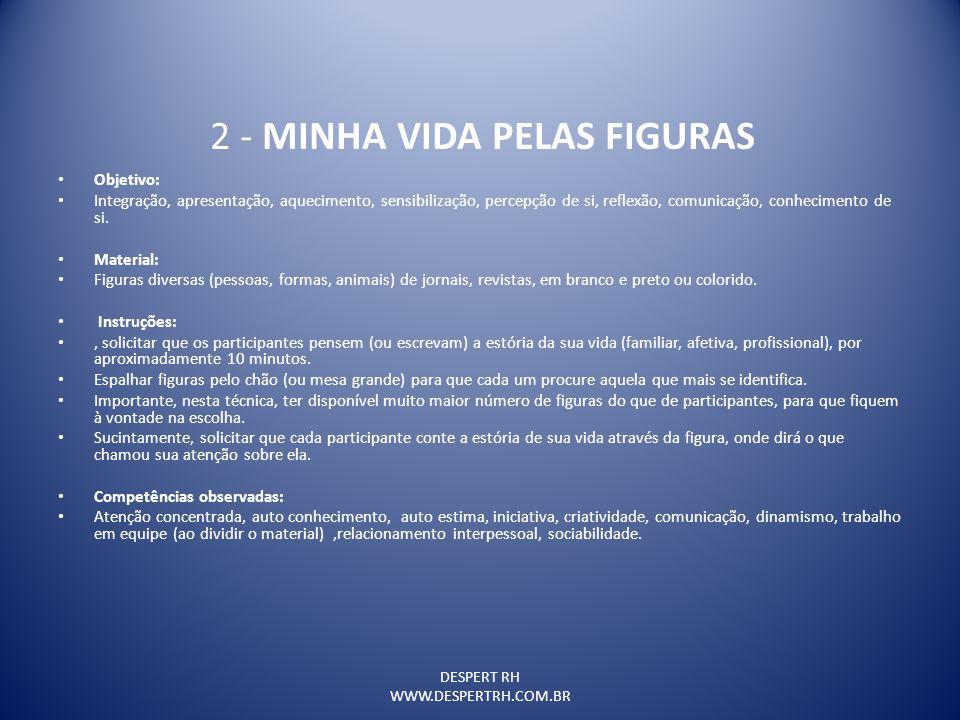 2 - MINHA VIDA PELAS FIGURAS