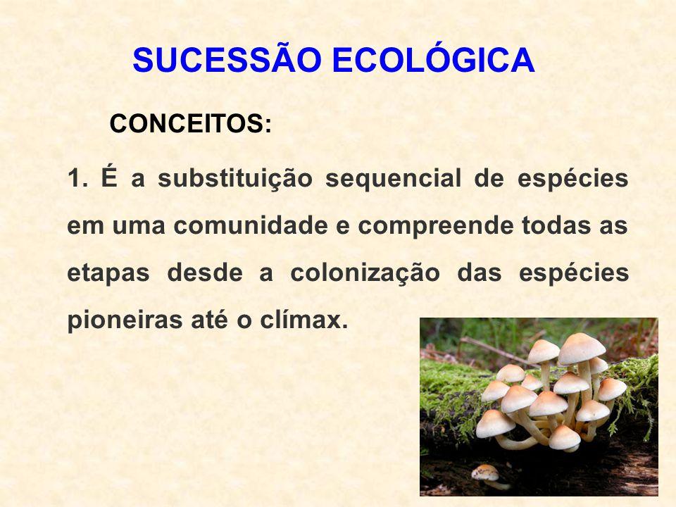 SUCESSÃO ECOLÓGICA CONCEITOS: