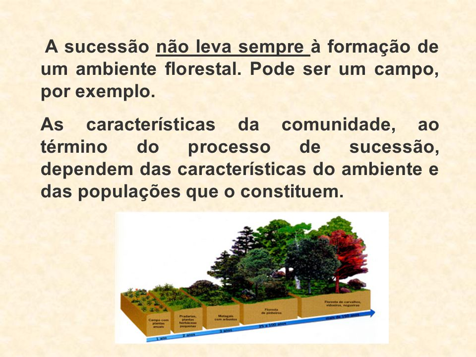A sucessão não leva sempre à formação de um ambiente florestal