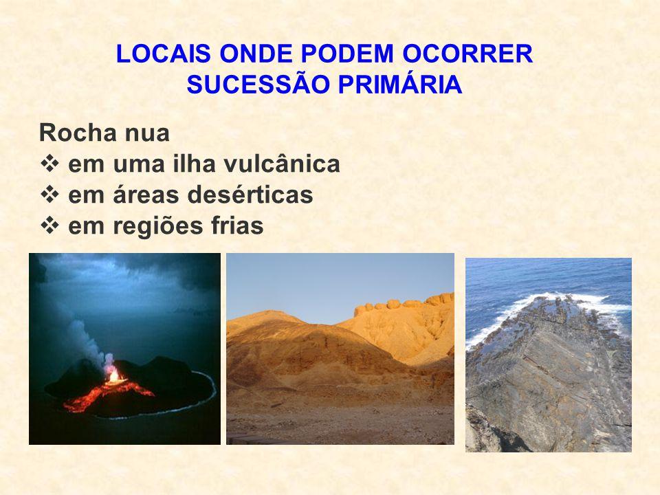 LOCAIS ONDE PODEM OCORRER SUCESSÃO PRIMÁRIA