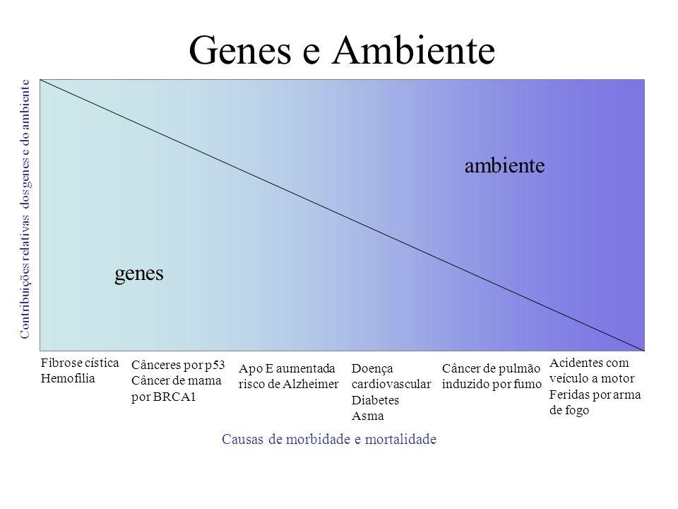 Genes e Ambiente ambiente genes Causas de morbidade e mortalidade