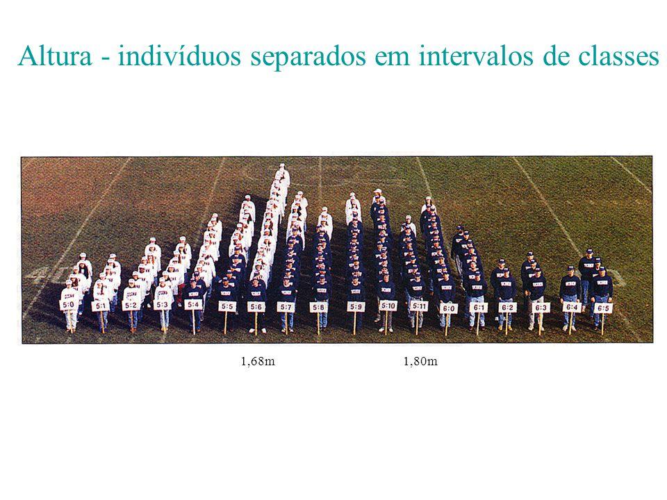 Altura - indivíduos separados em intervalos de classes