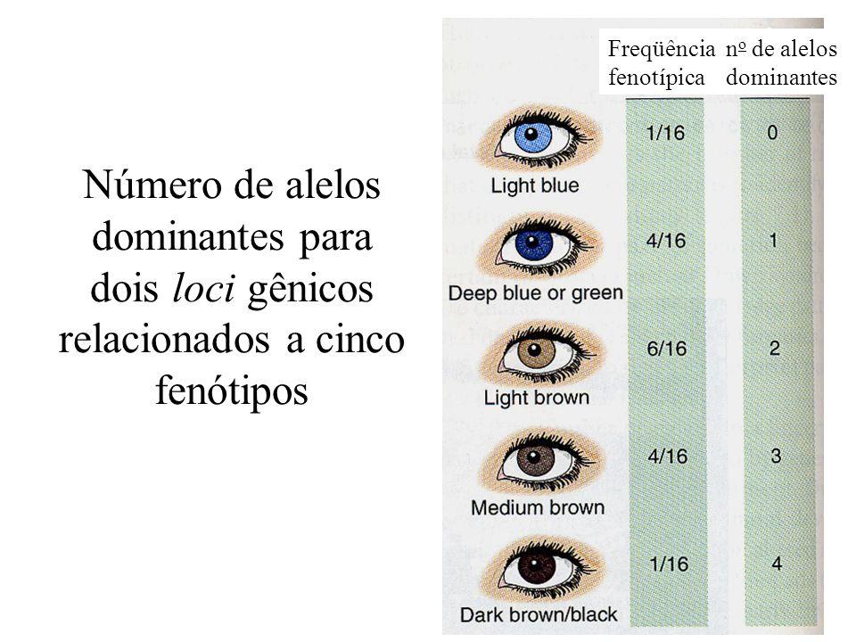Freqüência fenotípica. no de alelos. dominantes.
