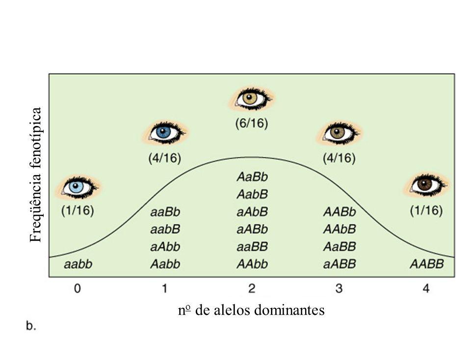 no de alelos dominantes