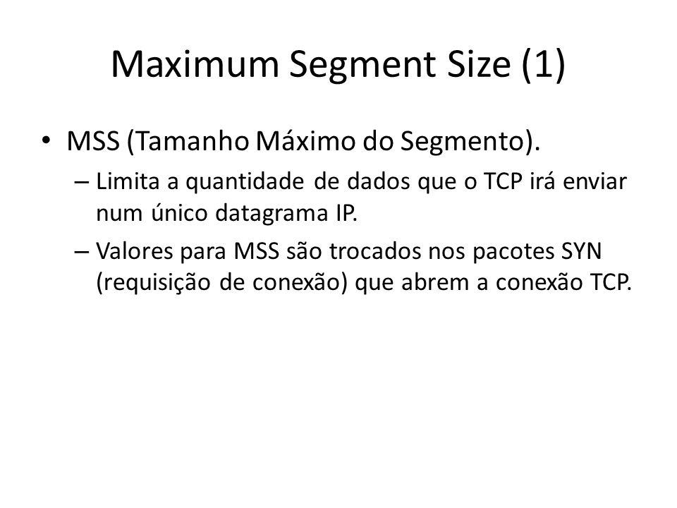 Maximum Segment Size (1)