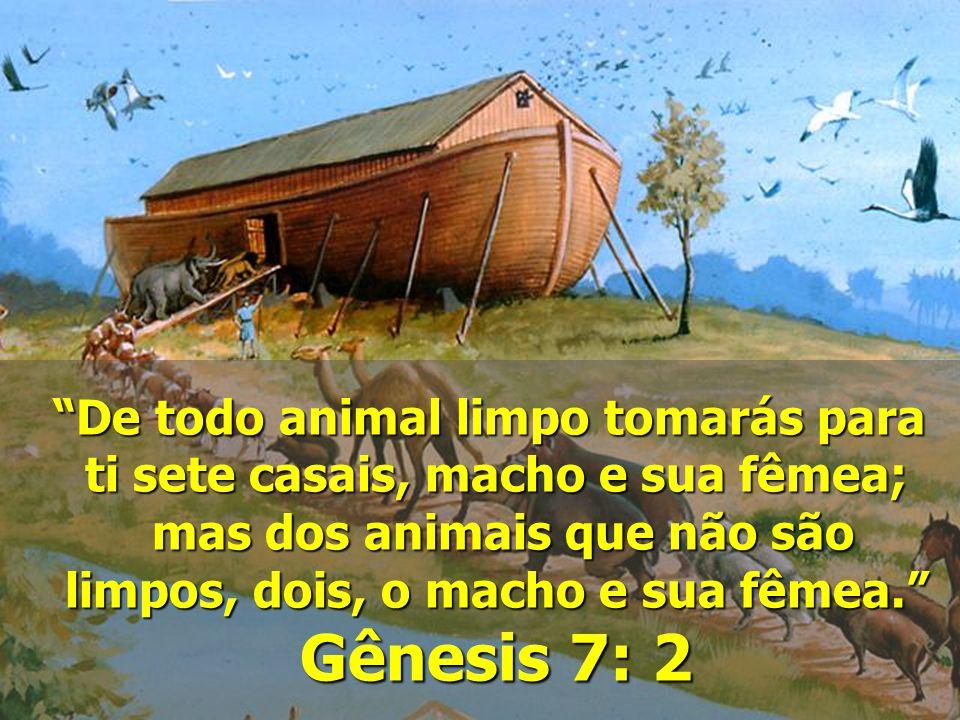 Gênesis 7: 2 De todo animal limpo tomarás para