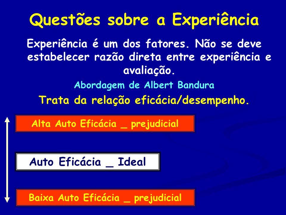 Questões sobre a Experiência
