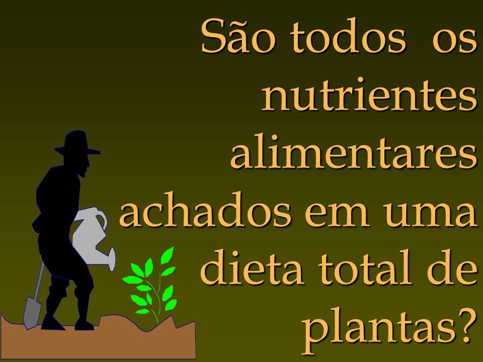 São todos os nutrientes alimentares achados em uma dieta total de plantas