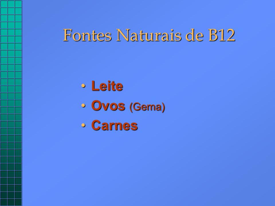 Fontes Naturais de B12 Leite Ovos (Gema) Carnes
