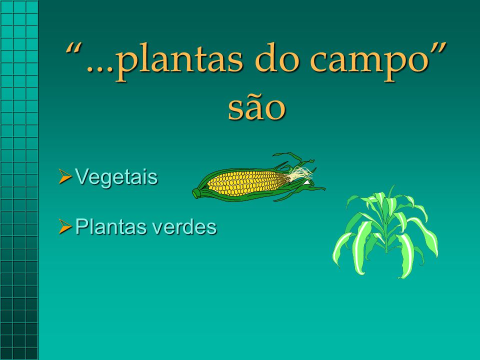 ...plantas do campo são Vegetais Plantas verdes