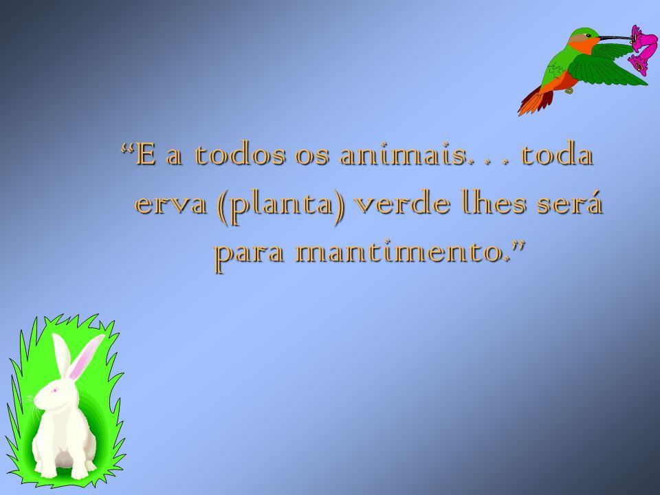 E a todos os animais. . . toda erva (planta) verde lhes será para mantimento.