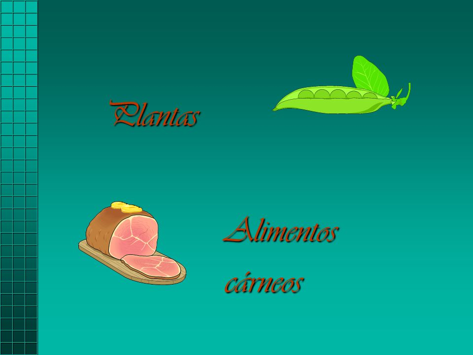 Plantas Alimentos cárneos