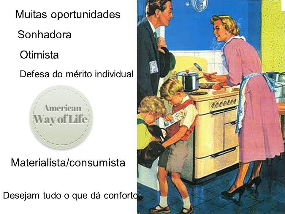 Materialista/consumista