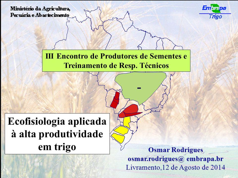 Ecofisiologia aplicada à alta produtividade em trigo