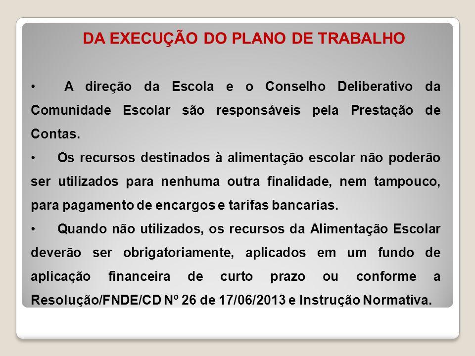 DA EXECUÇÃO DO PLANO DE TRABALHO
