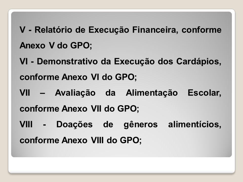 V - Relatório de Execução Financeira, conforme Anexo V do GPO;