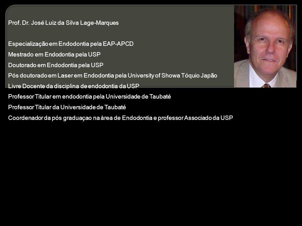 Prof. Dr. José Luiz da Silva Lage-Marques