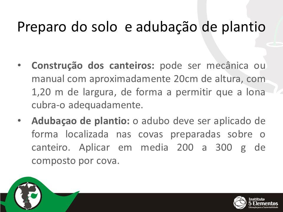 Preparo do solo e adubação de plantio