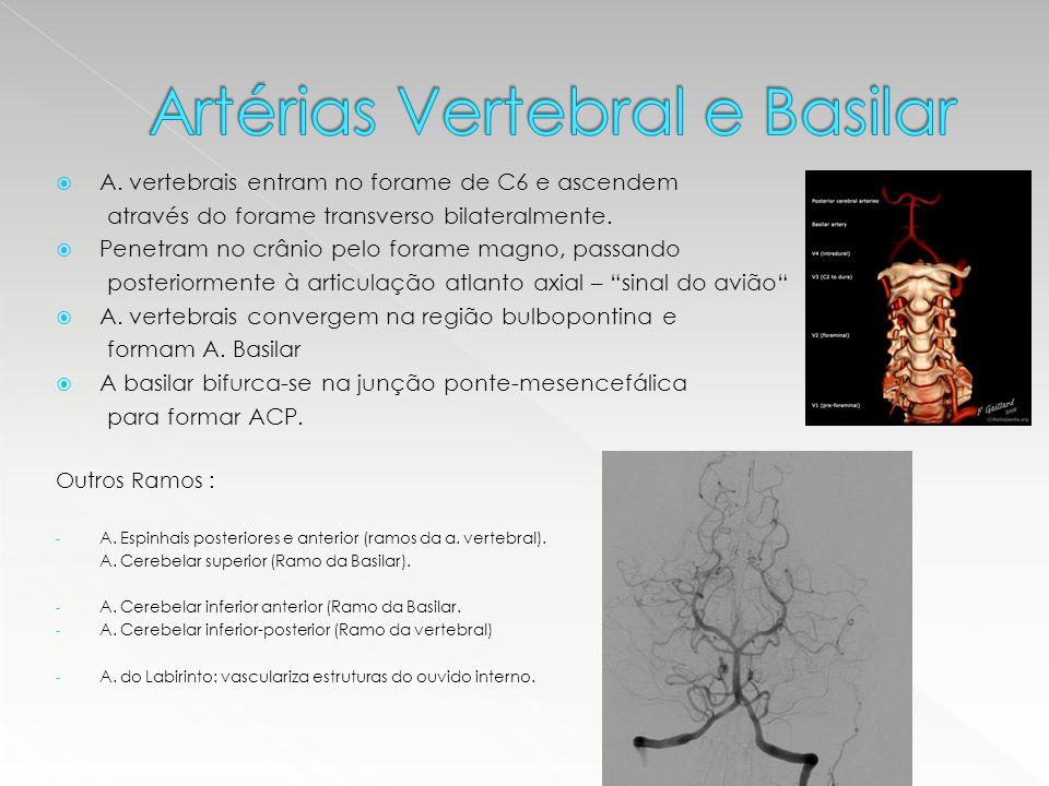 Artérias Vertebral e Basilar