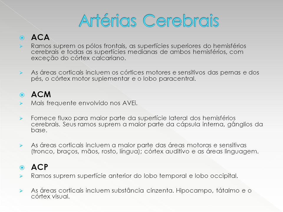 Artérias Cerebrais ACA ACM ACP