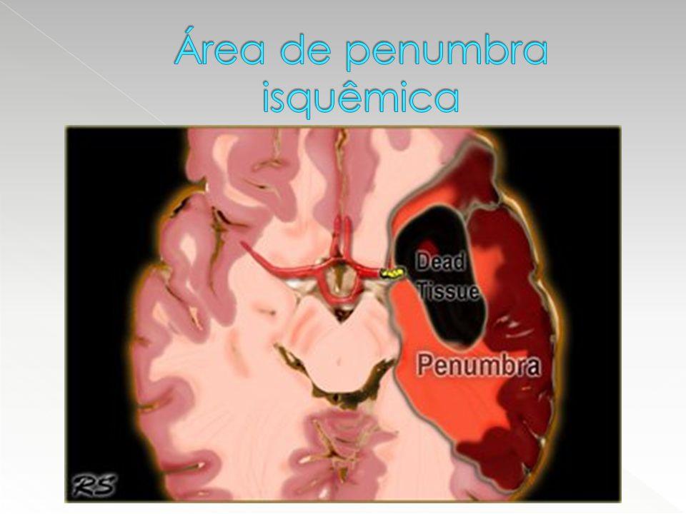 Área de penumbra isquêmica