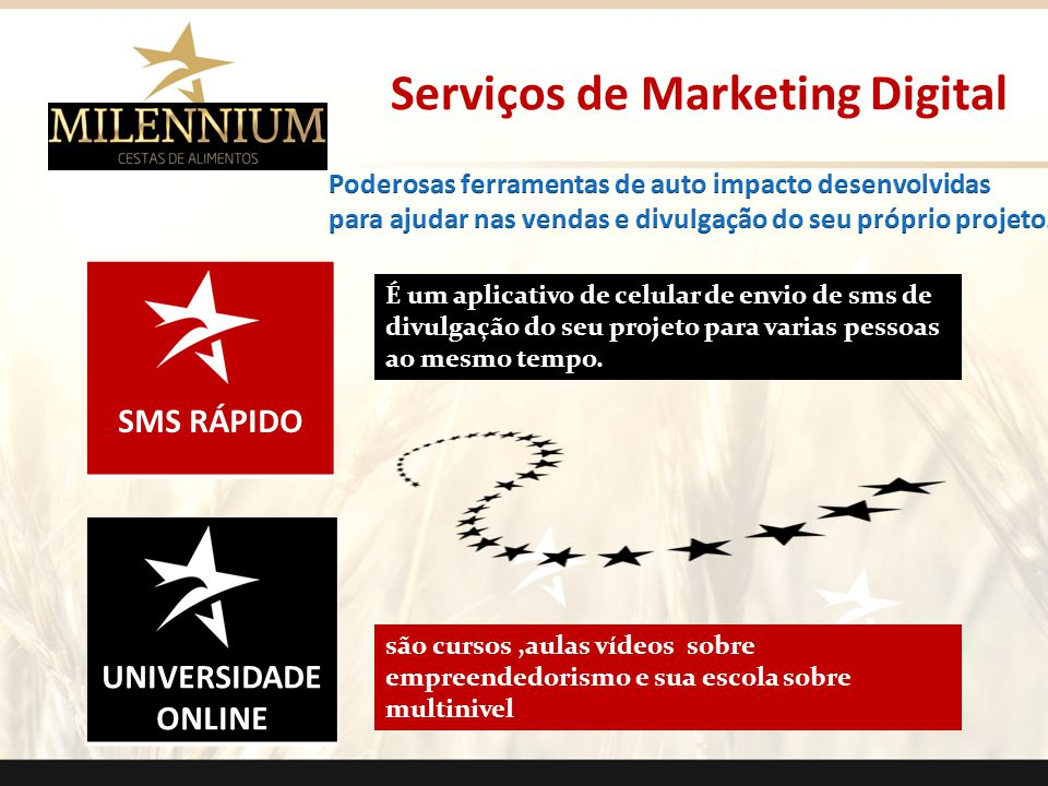 Serviços de Marketing Digital