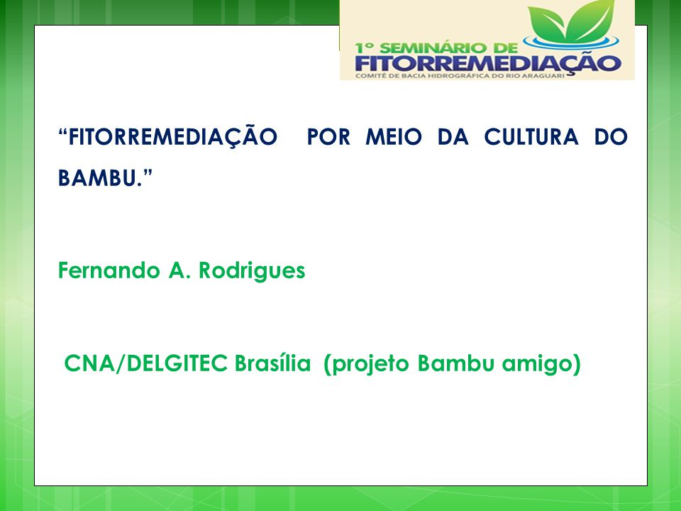 FITORREMEDIAÇÃO POR MEIO DA CULTURA DO BAMBU.