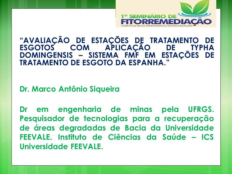 AVALIAÇÃO DE ESTAÇÕES DE TRATAMENTO DE ESGOTOS COM APLICAÇÃO DE TYPHA DOMINGENSIS – SISTEMA FMF EM ESTAÇÕES DE TRATAMENTO DE ESGOTO DA ESPANHA. Dr.