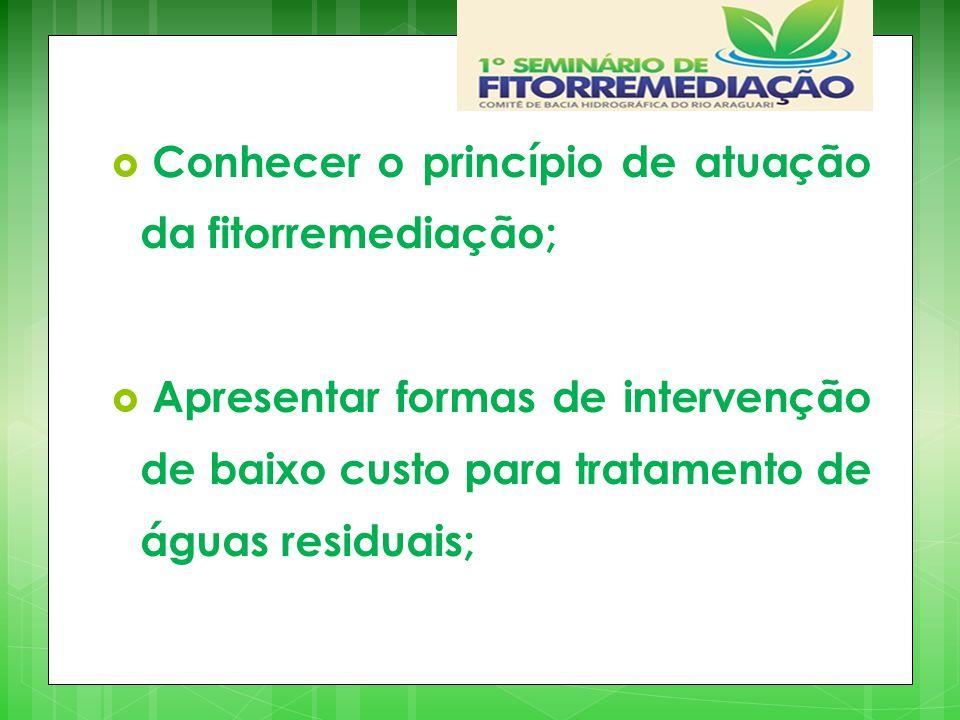 Conhecer o princípio de atuação da fitorremediação;