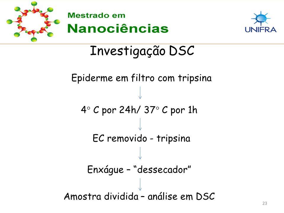 Investigação DSC Epiderme em filtro com tripsina