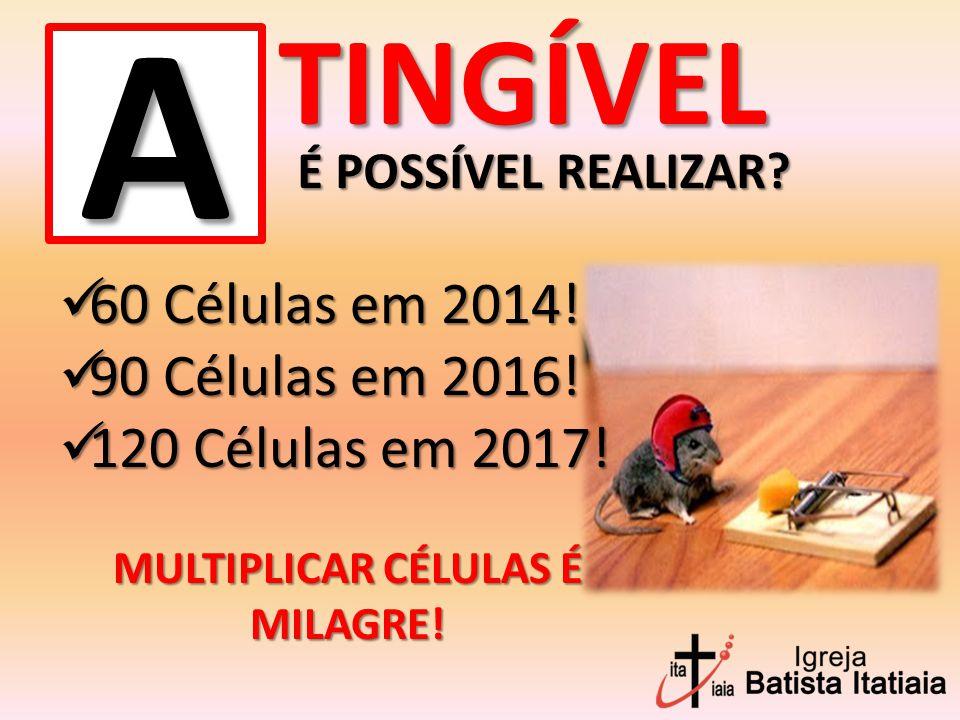 MULTIPLICAR CÉLULAS É MILAGRE!