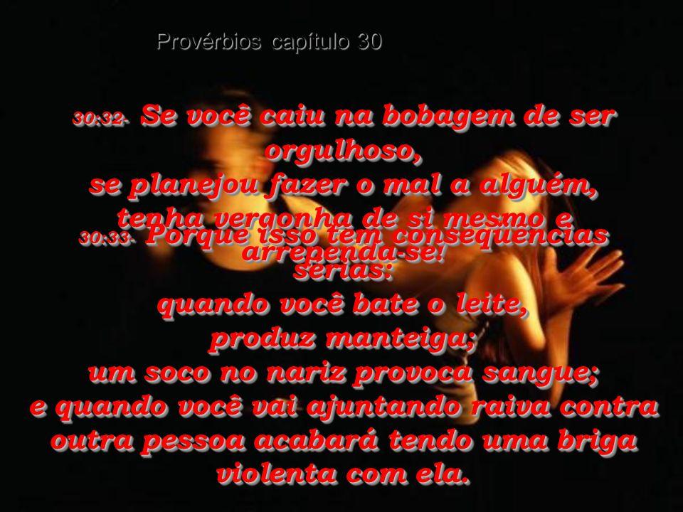 Provérbios capítulo 30