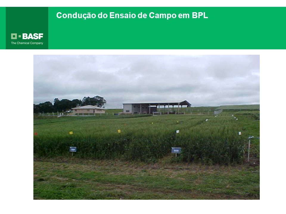 Condução do Ensaio de Campo em BPL