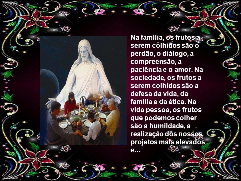 Na família, os frutos a serem colhidos são o perdão, o diálogo, a compreensão, a paciência e o amor.