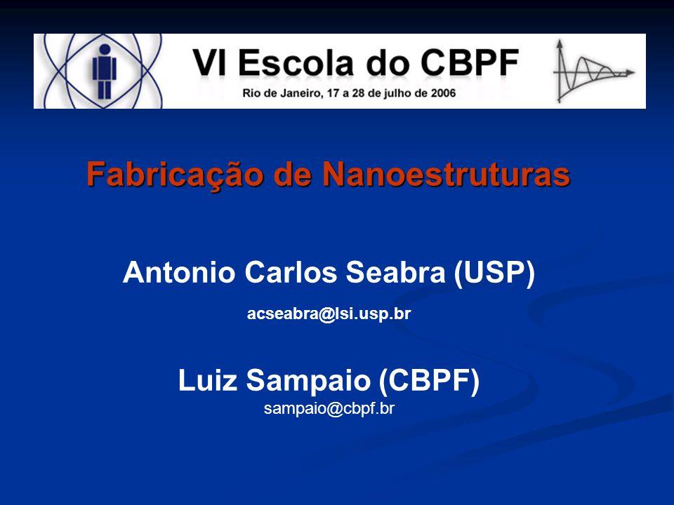 Antonio Carlos Seabra (USP) acseabra@lsi.usp.br