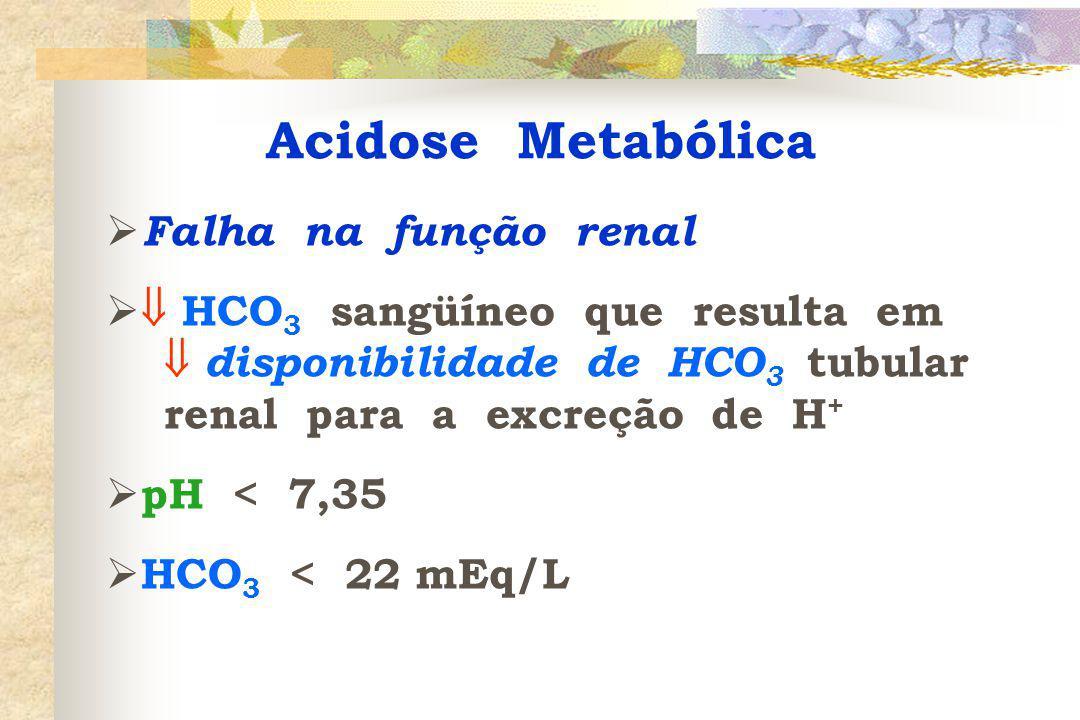 Acidose Metabólica Falha na função renal
