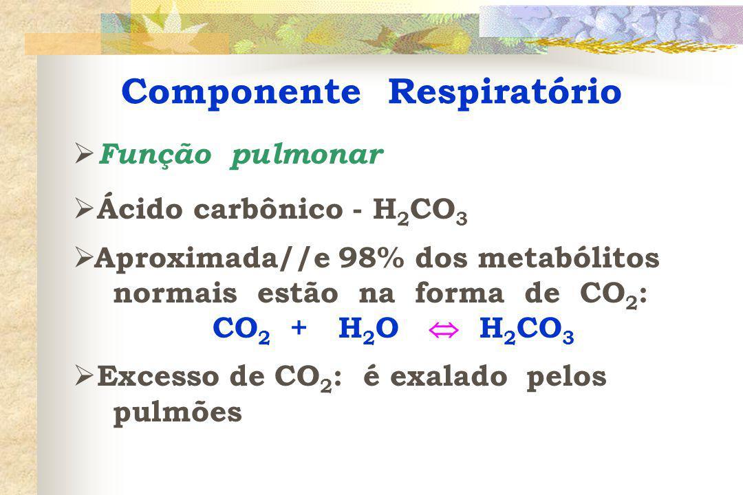 Componente Respiratório