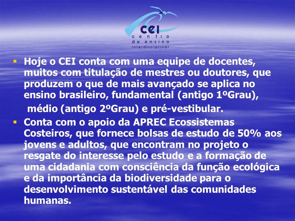Hoje o CEI conta com uma equipe de docentes, muitos com titulação de mestres ou doutores, que produzem o que de mais avançado se aplica no ensino brasileiro, fundamental (antigo 1ºGrau),