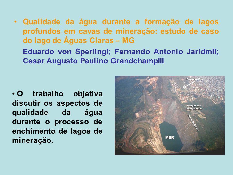 Qualidade da água durante a formação de lagos profundos em cavas de mineração: estudo de caso do lago de Águas Claras – MG