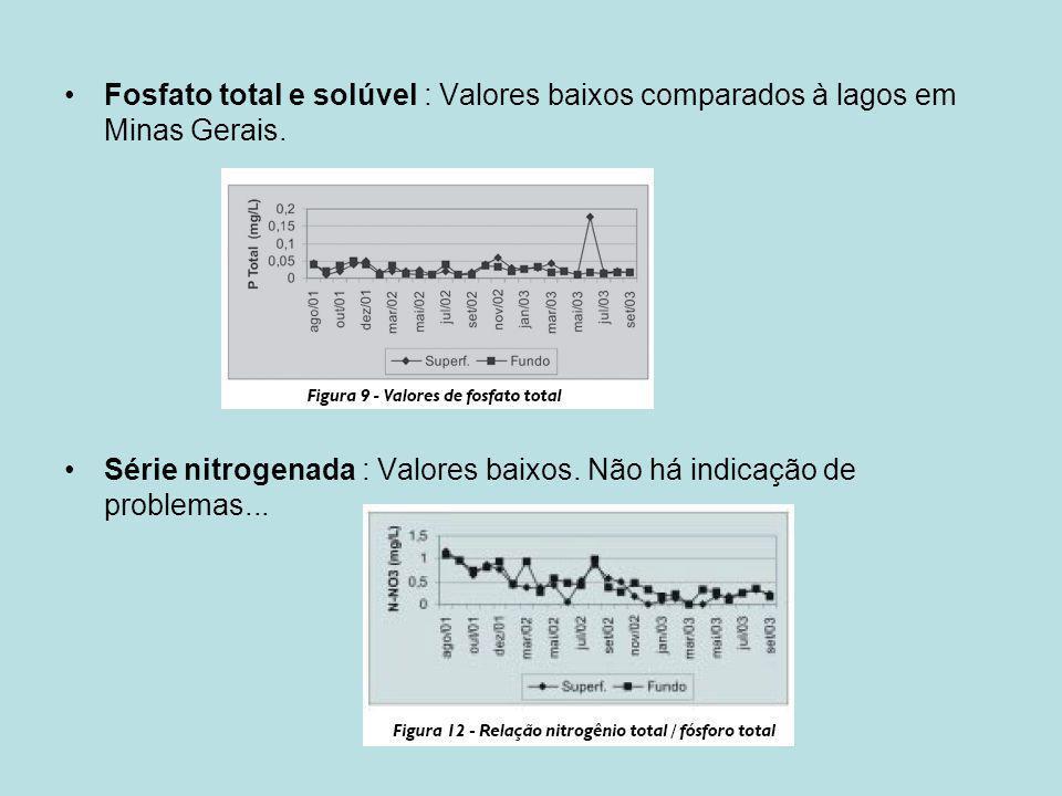 Fosfato total e solúvel : Valores baixos comparados à lagos em Minas Gerais.