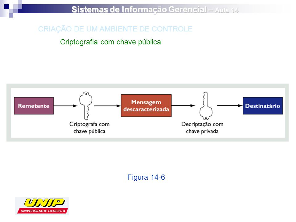 Sistemas de Informação Gerencial – Aula 14