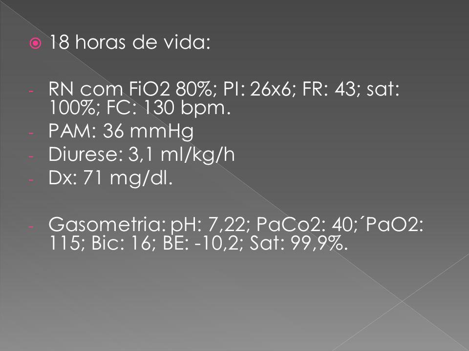 18 horas de vida: RN com FiO2 80%; PI: 26x6; FR: 43; sat: 100%; FC: 130 bpm. PAM: 36 mmHg. Diurese: 3,1 ml/kg/h.