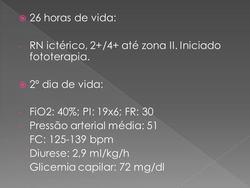 26 horas de vida: RN ictérico, 2+/4+ até zona II. Iniciado fototerapia. 2º dia de vida: FiO2: 40%; PI: 19x6; FR: 30.