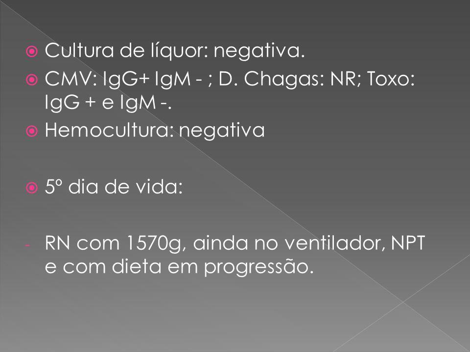 Cultura de líquor: negativa.