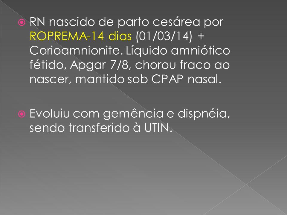 RN nascido de parto cesárea por ROPREMA-14 dias (01/03/14) + Corioamnionite. Líquido amniótico fétido, Apgar 7/8, chorou fraco ao nascer, mantido sob CPAP nasal.
