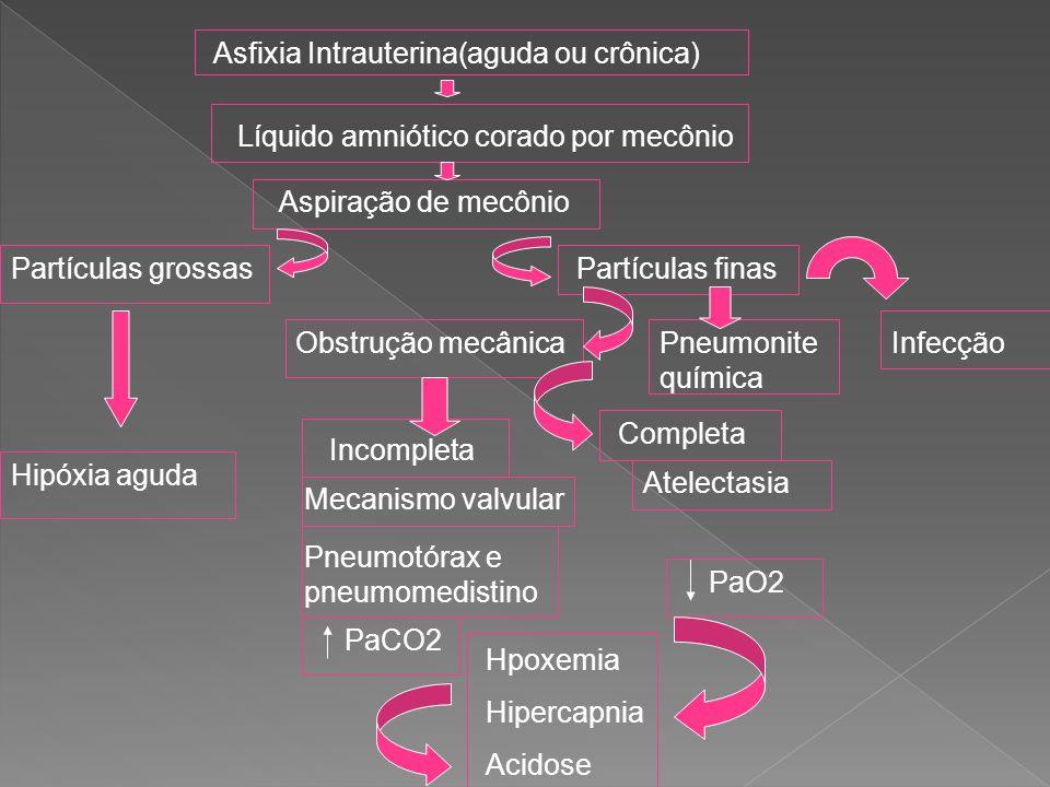 Asfixia Intrauterina(aguda ou crônica)
