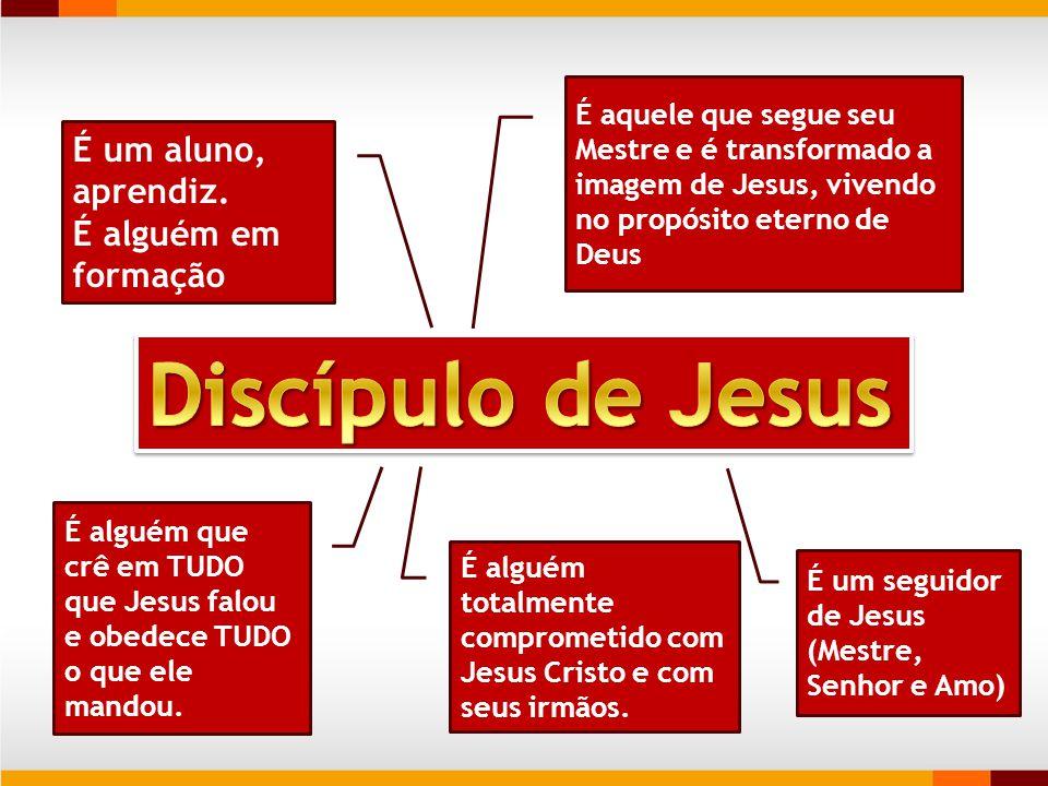 Discípulo de Jesus É um aluno, aprendiz. É alguém em formação
